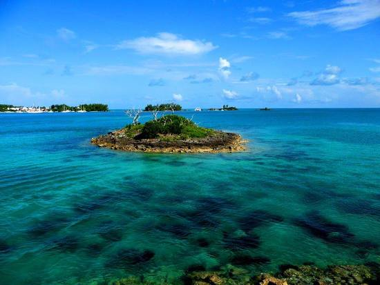 Bermuda honeymoon planning Mangrove beach