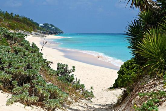 Bermuda honeymoon planning