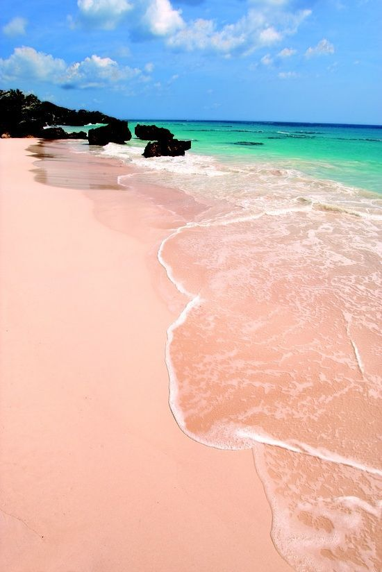 Bermuda Pink Sand Beach for Honeymooners