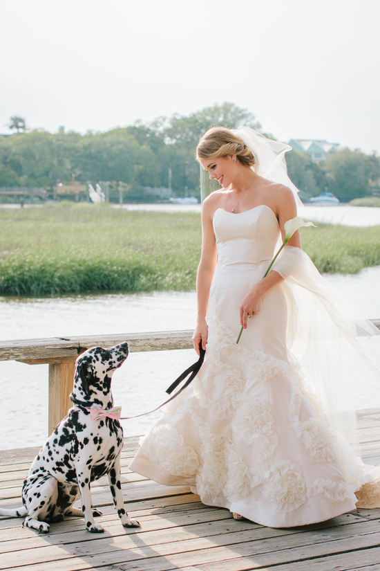 Romantic bride poses with dalmation ring bearer