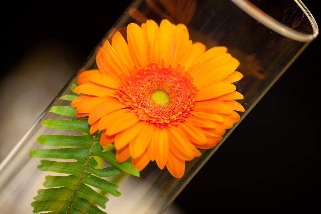 Real-weddings-new-york-wedding-photography-orange-wedding-flowers-simple-centerpieces.full