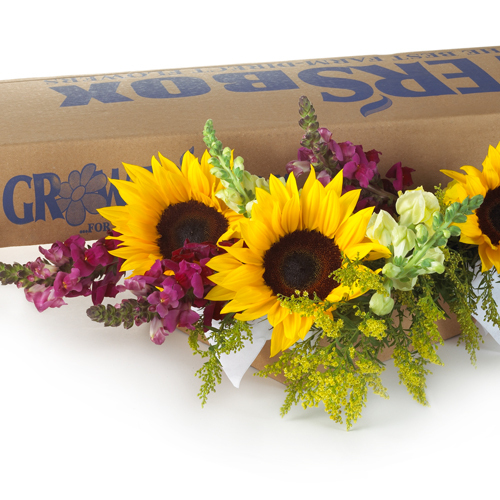 DIY Wedding Flowers - Sunflowers 500