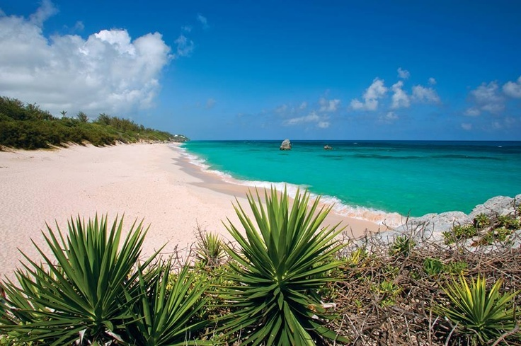 Bermuda honeymoon planning 3