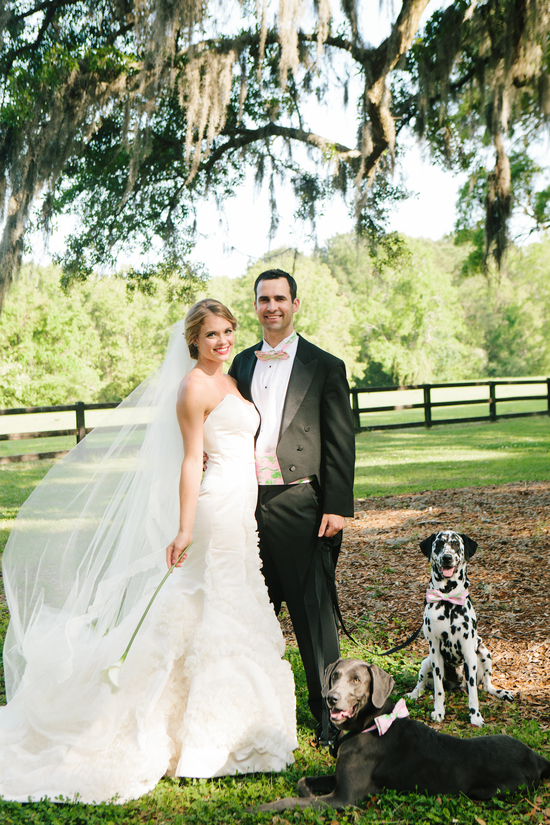 Bride and groom pose with puppy ring bearer