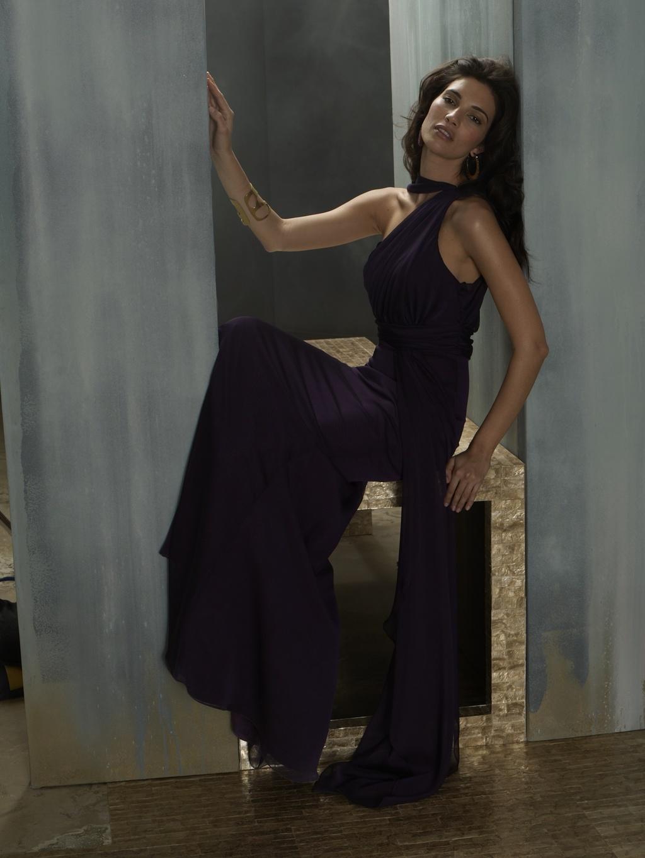 Long-bridesmaid-dress-deep-purple-high-neck-lazaro-2011.full