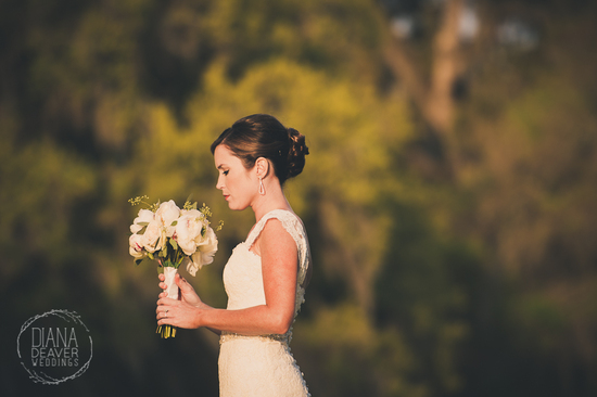 Beautiful Bridal Portrait by Diana Deaver Weddings