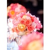 Classic-wedding-real-weddings-romantic-pink-peach-wedding-reception-centerpieces-flowers.square