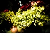 Tropical-wedding-flowers-reception-centerpieces.square