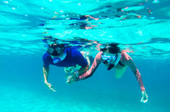 power snorkel adventure in bermuda in hamilton 107400 1