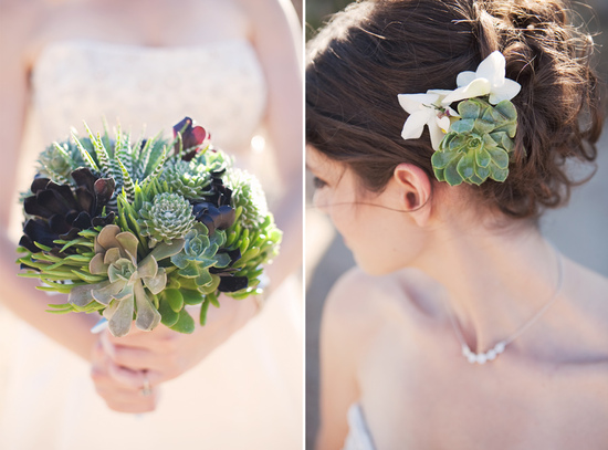 sweet succulents for green weddings 11