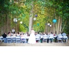 Wedding-planning-ideas-tips-outdoor-weddings.square