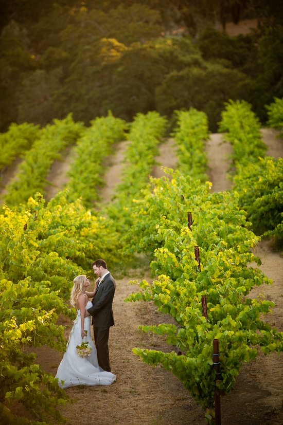 Northern california vineyard wedding venue