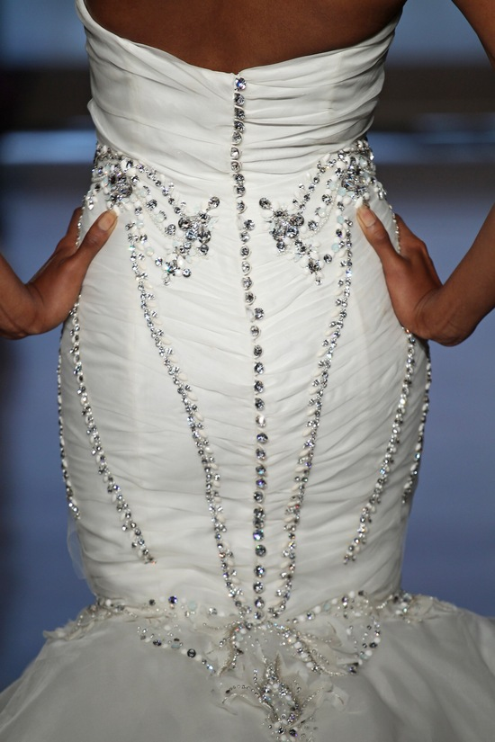photo of Aura by Ines Di Santo 2014 Couture Collection