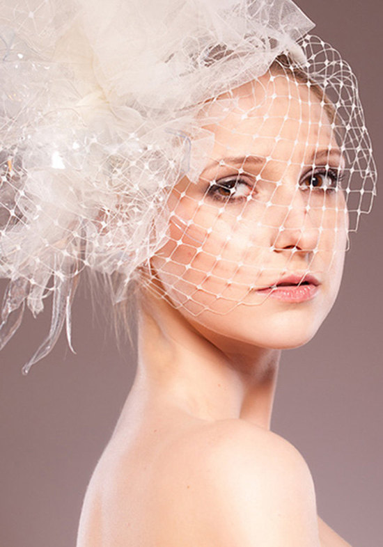 photo of Eco-Fashion Elegant Bridal Head Piece