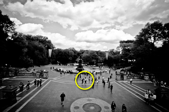 Romantic engagement proposal in NYC's Central Park