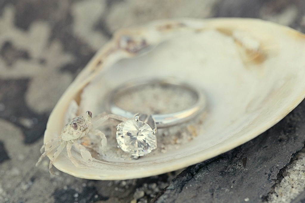 Beach ring shot with crab