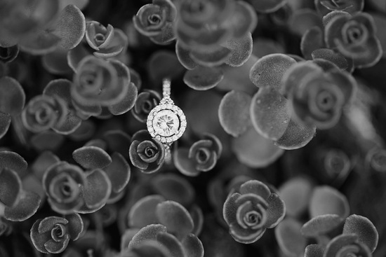 Ring in black and white with flower background
