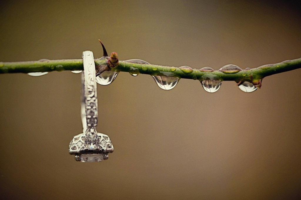 Ring_shot_in_nature_with_rain_drops.full