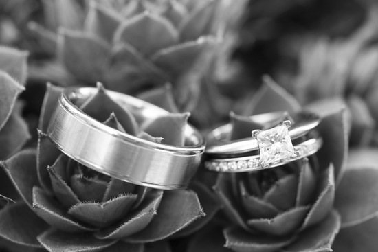 Ring shot in succulents