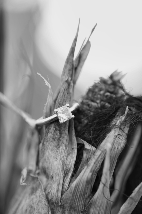 photo of Ring shot on corn husk