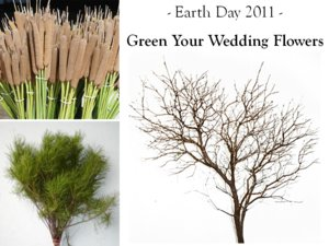 photo of Eco-Friendly Wedding Flowers for Earth Day: 3 Ideas to Go Green!