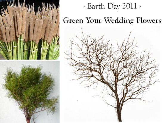 Help keep the earth green by incorporating eco-friendly wedding flowers