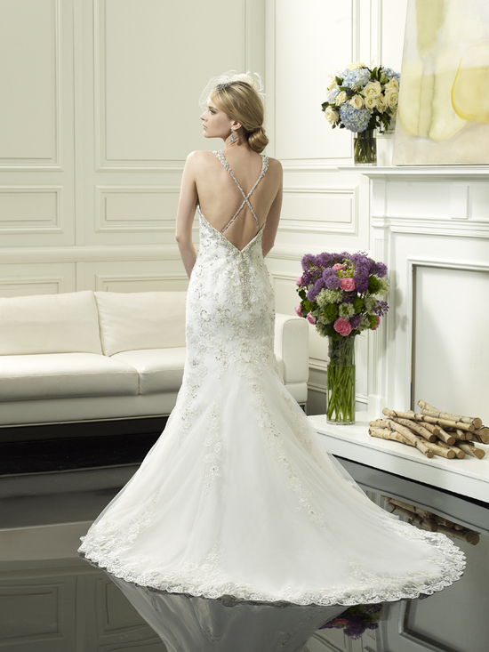 photo of Wedding gown from Moonlight Couture