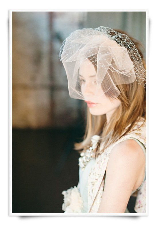 Blush pink vintage-inspired bridal veil with french netting