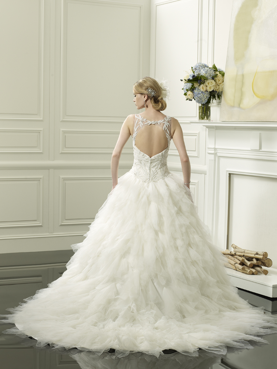 Feathered_ball_gown_from_val_stefani_back.full