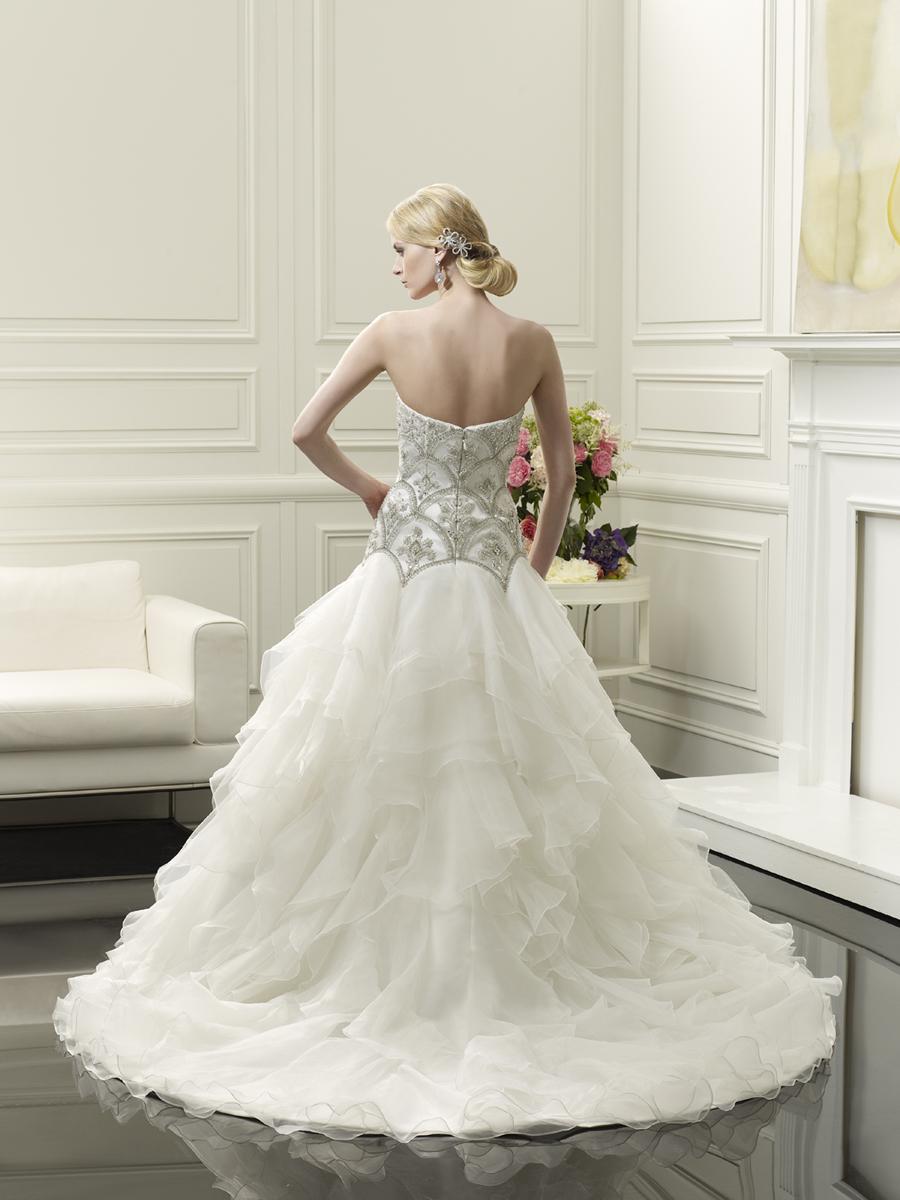 Glamorous_wedding_gown_by_val_stefani_back.full
