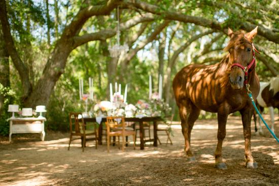 photo of Rustic Woodland Meets Vintage Elegance
