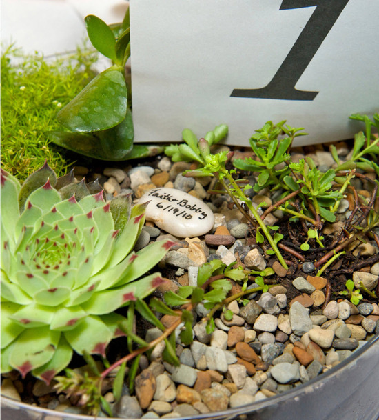 Eco-chic wedding reception table centerpieces featuring succulents