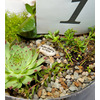 Eco-chic-wedding-centerpieces-succulents-personalized-stones.square