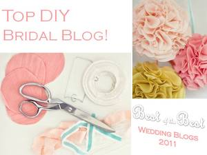 photo of Best DIY Bridal Blog for 2011: Cast Your Vote!