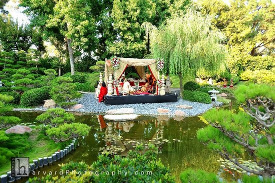 Stunning wedding photo of enchanted garden wedding venue, Indian wedding in California
