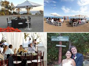 photo of Top Eco-Friendly Wedding Venues