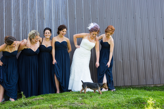 creationsphoto bridesmaids