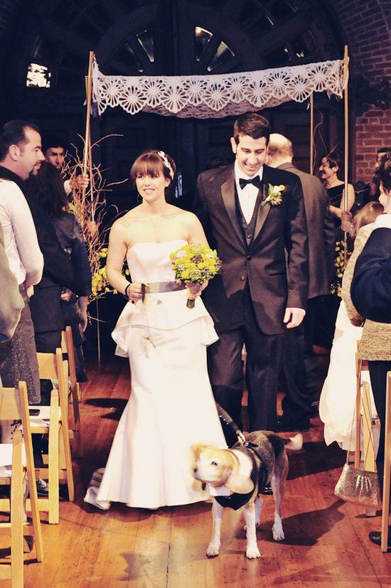 photo of Retro Wedding Complete with Automobiles, Antiques, and a Beagle