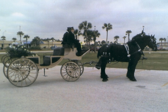 photo of Horse & Buggy Daze