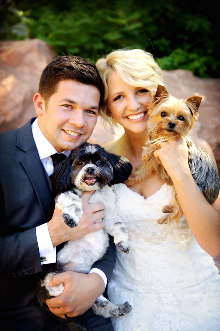 Bride and groom with their four legged friends