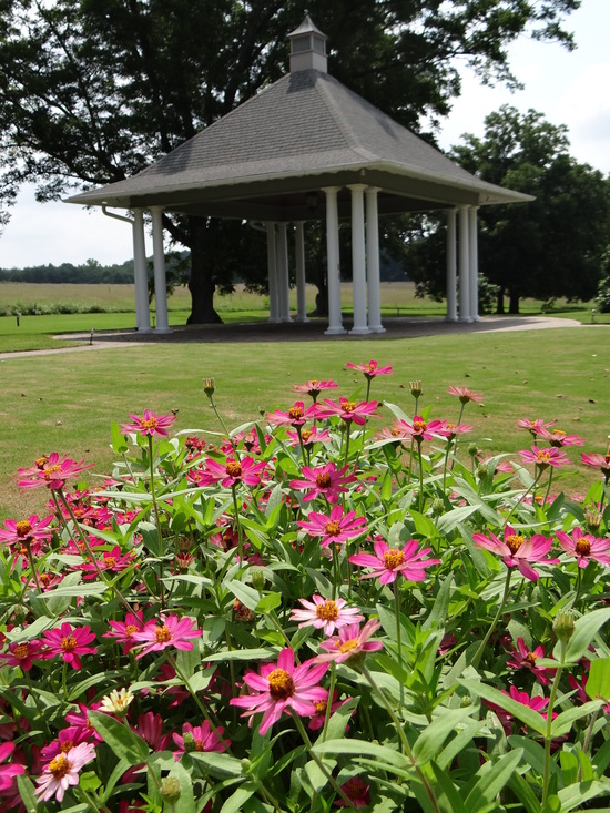 Summer flowers by wedding gazebo