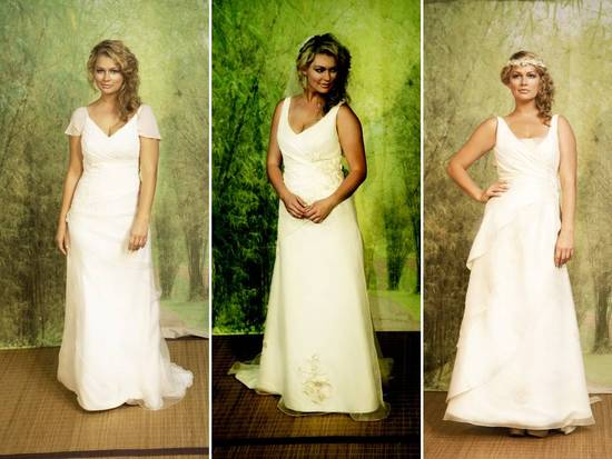 Beautiful 2011 plus size wedding dresses by Adele Wechsler