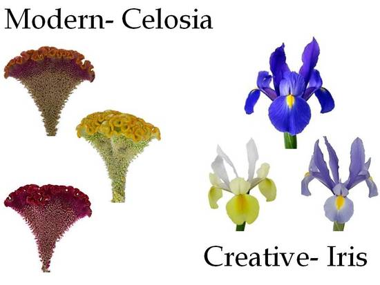 Celosia flowers are perfect for a modern wedding, and irises are great for creative wedding styles