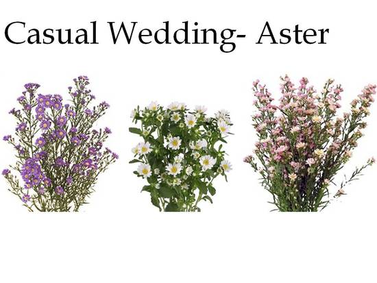 Asters are the perfect wedding flowers for a casual affair