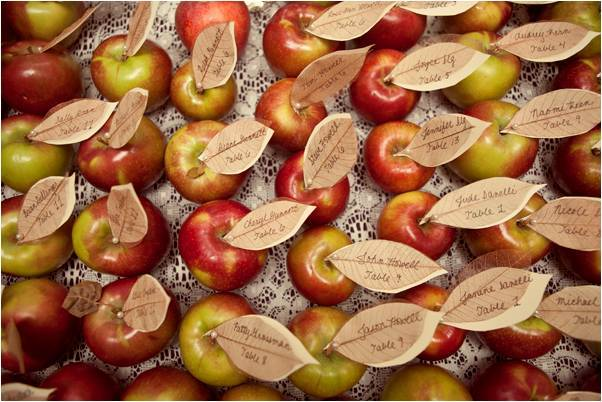 Vegan-wedding-eco-chic-handmade-diy-escort-cards-made-from-real-apples.full