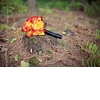 New-hampshire-rustic-wedding-vibrant-orange-bridal-bouquet.square