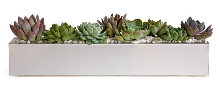 Easy-diy-wedding-reception-centerpiece-succulents-in-silver-trough.full