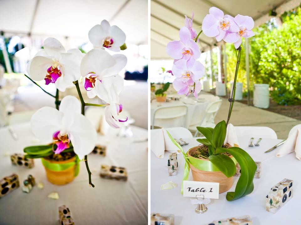 Centros de mesa para boda con macetas foro organizar una