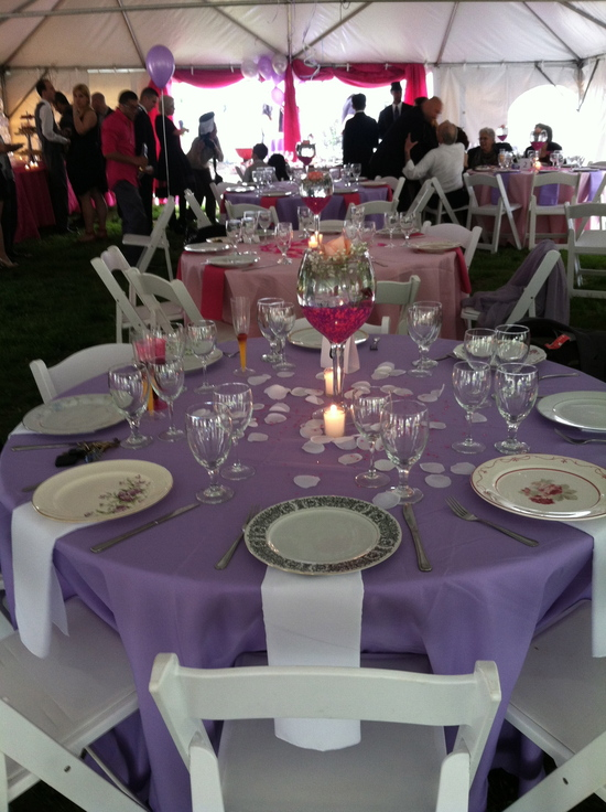 Fun ideas for sweet 16, party planner, ny party planner, back yard parties, bartenders, waitress, service,