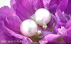 Whiteflash-pearl-diamond-earrings-studs-giveaway-3.square